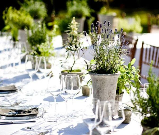 Eco Friendly Wedding Ideas: Save Money With An Eco-Friendly Wedding