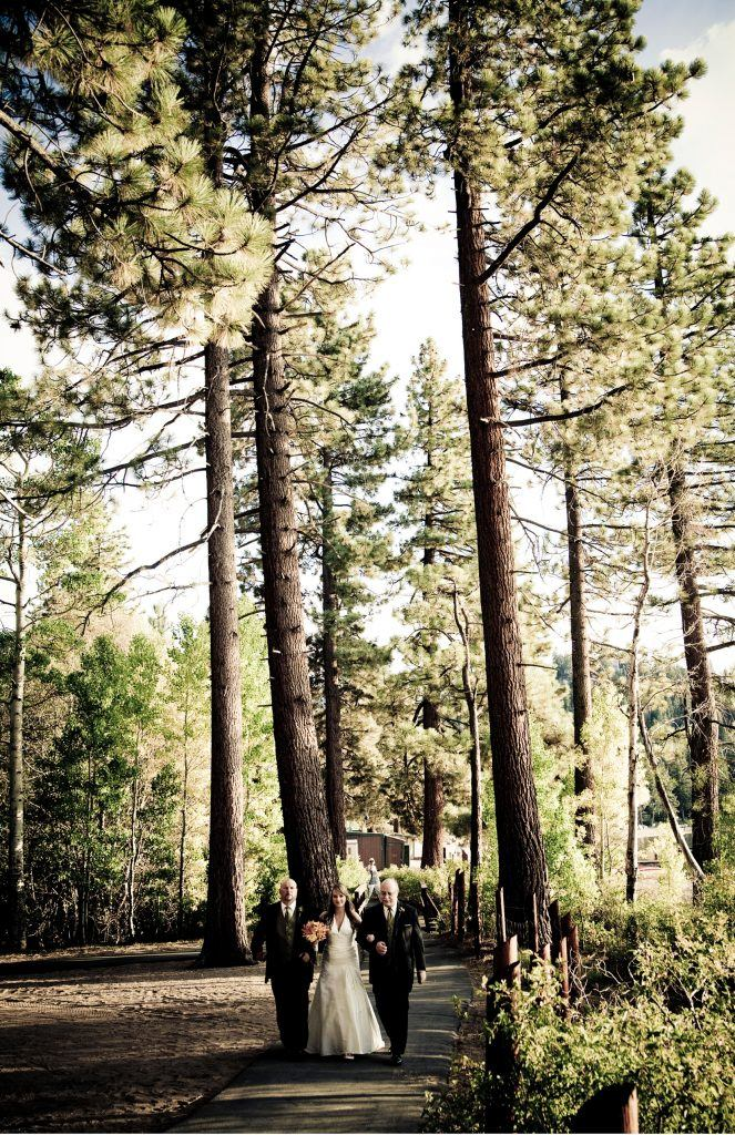bride and groom in the pine trees